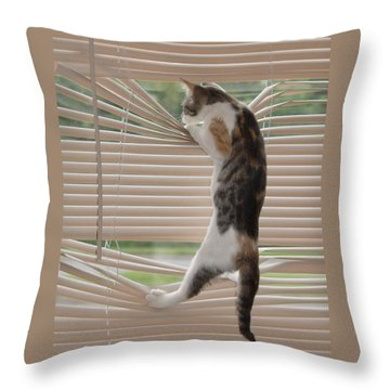 Ana Lucia Levelor Throw Pillow