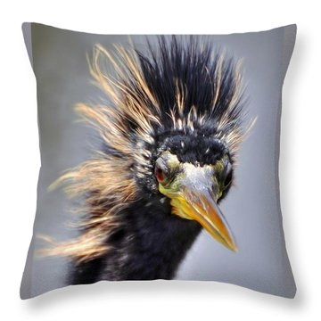 Throw Pillow featuring the photograph Anhinga  by Savannah Gibbs