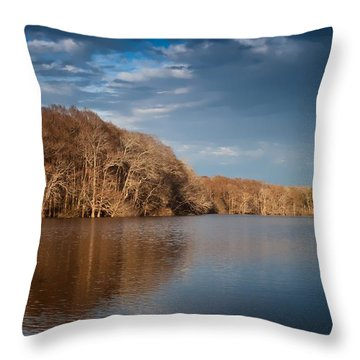 Apalachicola River  Throw Pillow by Debra Forand