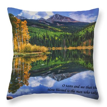 Approaching Storm  Throw Pillow by Priscilla Burgers