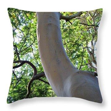 Arbutus Throw Pillow