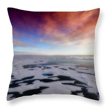 Arctic Sea Ocean Water Antarctica Winter Snow Throw Pillow by Paul Fearn