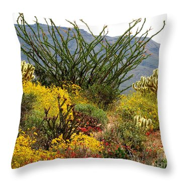 Arizona Springtime Throw Pillow