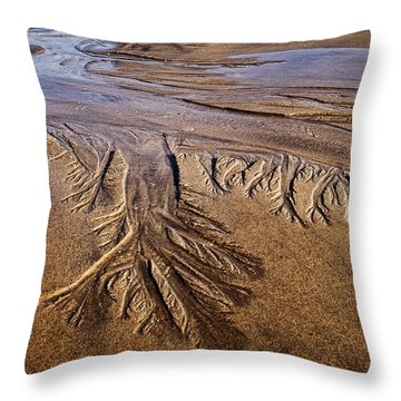 Throw Pillow featuring the photograph Artwork Of The Tides by Gary Slawsky