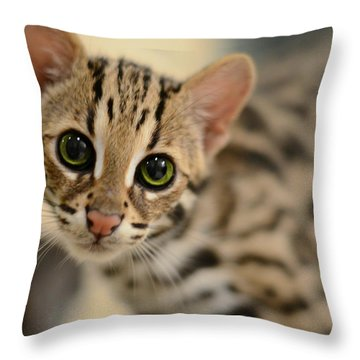 Asian Leopard Cub Throw Pillow
