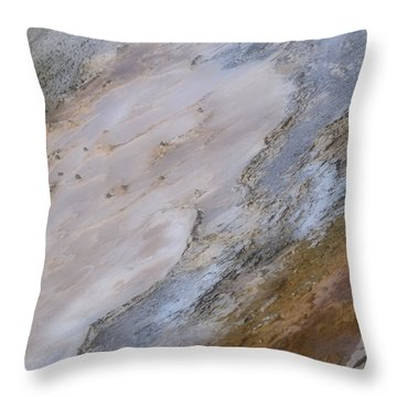 Throw Pillow featuring the photograph Atilt by Nadalyn Larsen