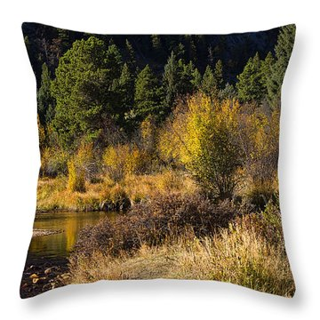 Autumn In The Rockies Throw Pillow by Anne Rodkin