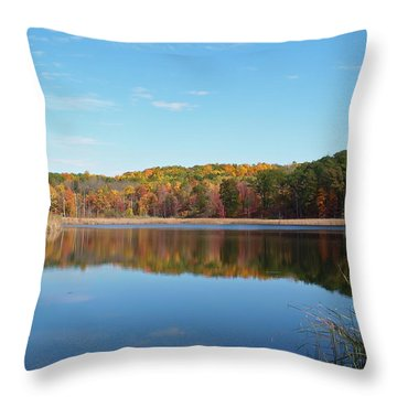 Autumn Pond Throw Pillow by Aimee L Maher Photography and Art Visit ALMGallerydotcom