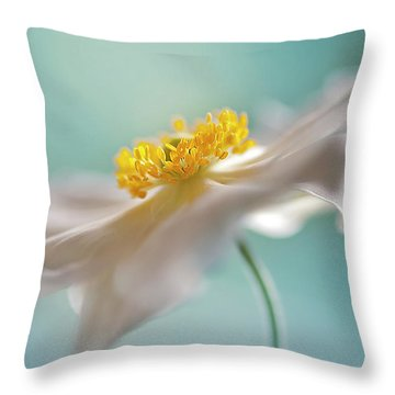 Soft Throw Pillows