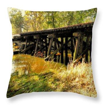 Autumn Travels Throw Pillow