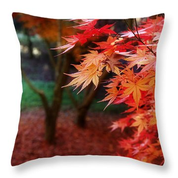 Autumnal Forest Throw Pillow by Les Cunliffe