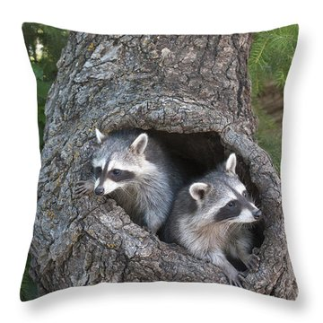Awaiting Mom Throw Pillow by Sandra Bronstein