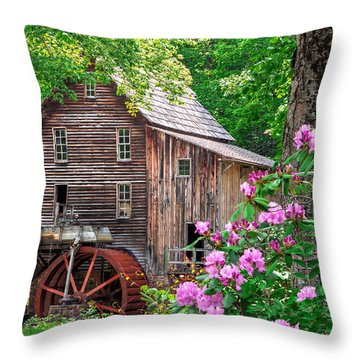 Babcock State Park Throw Pillow