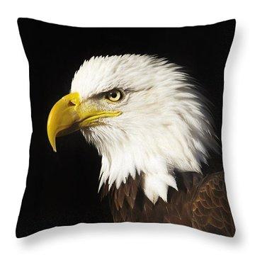 Bald Eagle  Throw Pillow by Brian Cross