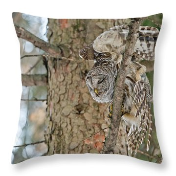 Throw Pillow featuring the photograph Barred Owl by Michael Cummings