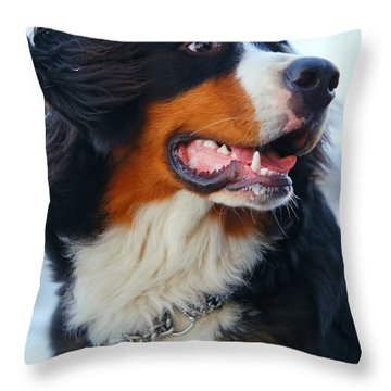 Beautiful Dog Portrait Throw Pillow