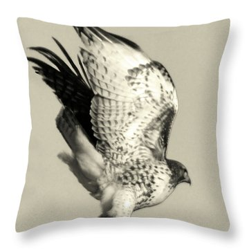 Throw Pillow featuring the photograph Beautiful Predator by Suzette Kallen