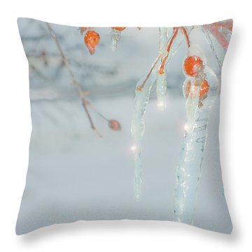 Before The Thaw Throw Pillow by Sandi Mikuse