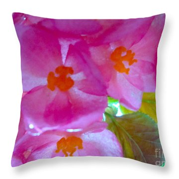 Begonia Debut Throw Pillow by Cathy Dee Janes