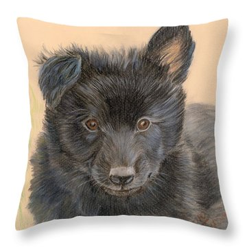 Belgian Sheepdog Puppy Throw Pillow by Ruth Seal