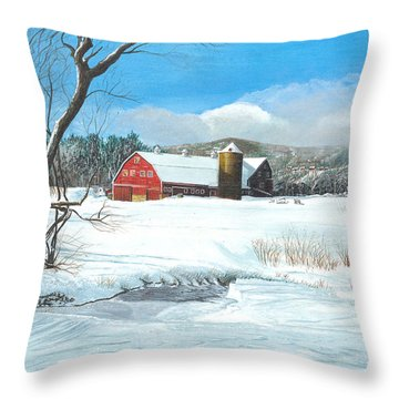 below freezing in New England Throw Pillow by Stuart B Yaeger