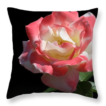 Throw Pillow featuring the photograph Bicolordette by Doug Norkum