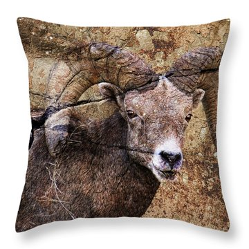 Bighorn Rock Throw Pillow by Steve McKinzie