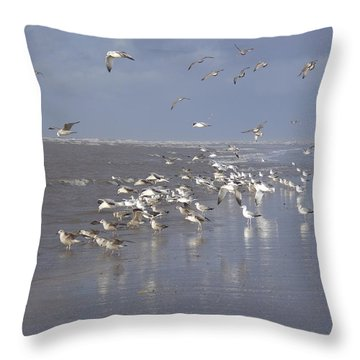 Birds At The Beach Throw Pillow