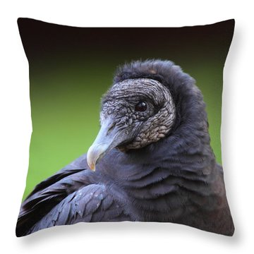 Black Vulture Portrait Throw Pillow