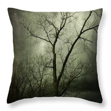 Bleak Throw Pillow by Cynthia Lassiter