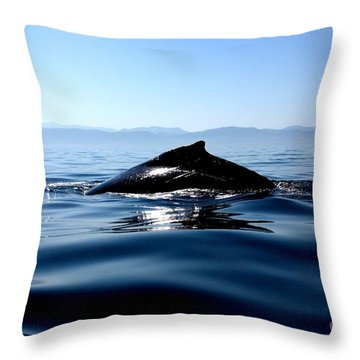 Blue Waters Throw Pillow by Nicola Fiscarelli