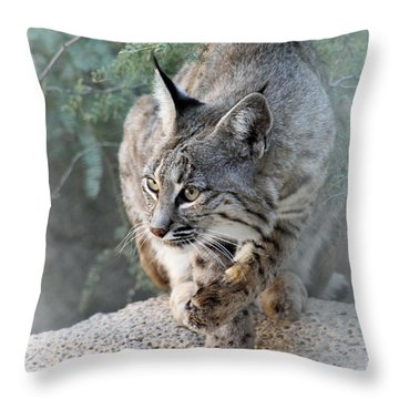 I Was Grooming Throw Pillow