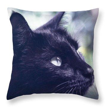 Boki Throw Pillow by Sharon Mau