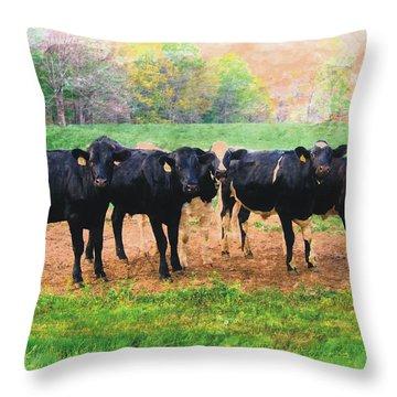 Bovine Quintet Throw Pillow