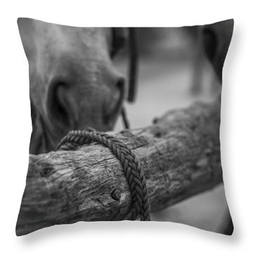 Braided Rope Throw Pillow by Amber Kresge