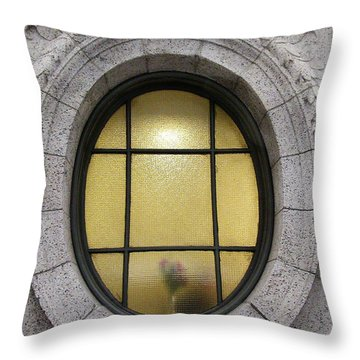 Throw Pillow featuring the photograph Bryant Park Window by Gary Slawsky