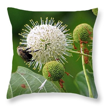 Bumbler Throw Pillow
