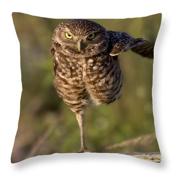 Burrowing Owl Photograph Throw Pillow by Meg Rousher