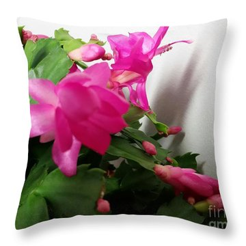 Throw Pillow featuring the photograph Cactus Flower.  by Rose Wang