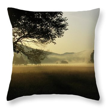 Cades Cove Sunrise II Throw Pillow by Douglas Stucky