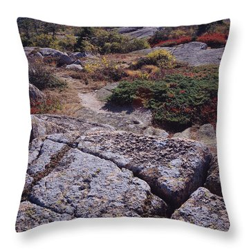 Cadillac Mountain Throw Pillow