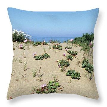 Convolvulaceae Throw Pillows