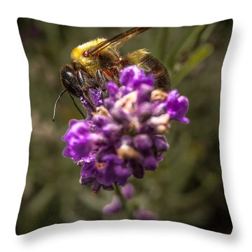Carpenter Bee On A Lavender Spike Throw Pillow