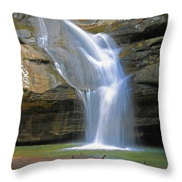 Cedar Falls Landscape  Throw Pillow