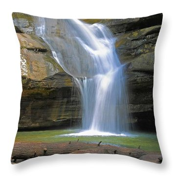 Cedar Falls Landscape  Throw Pillow