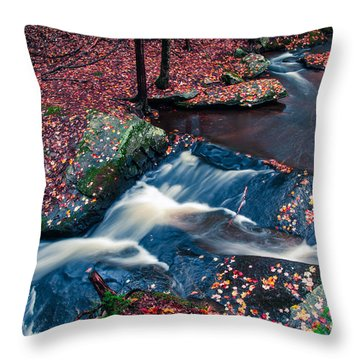 Chesterfield Gorge New Hampshire Throw Pillow by Edward Fielding