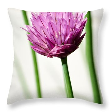 Chives Throw Pillow by Jouko Lehto