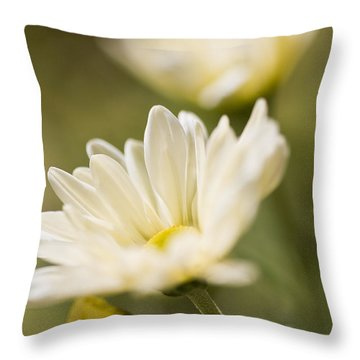 Chrysanthemum Flowers Throw Pillow