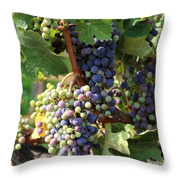 Colorful Grapes Throw Pillow by Carol Groenen
