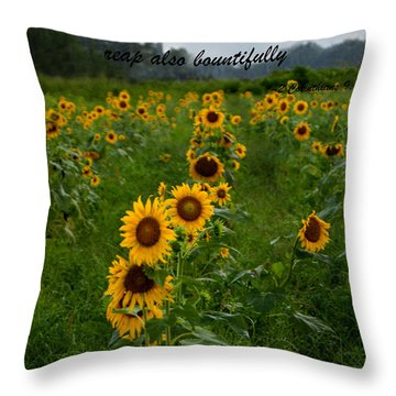2 Corinthians Throw Pillow